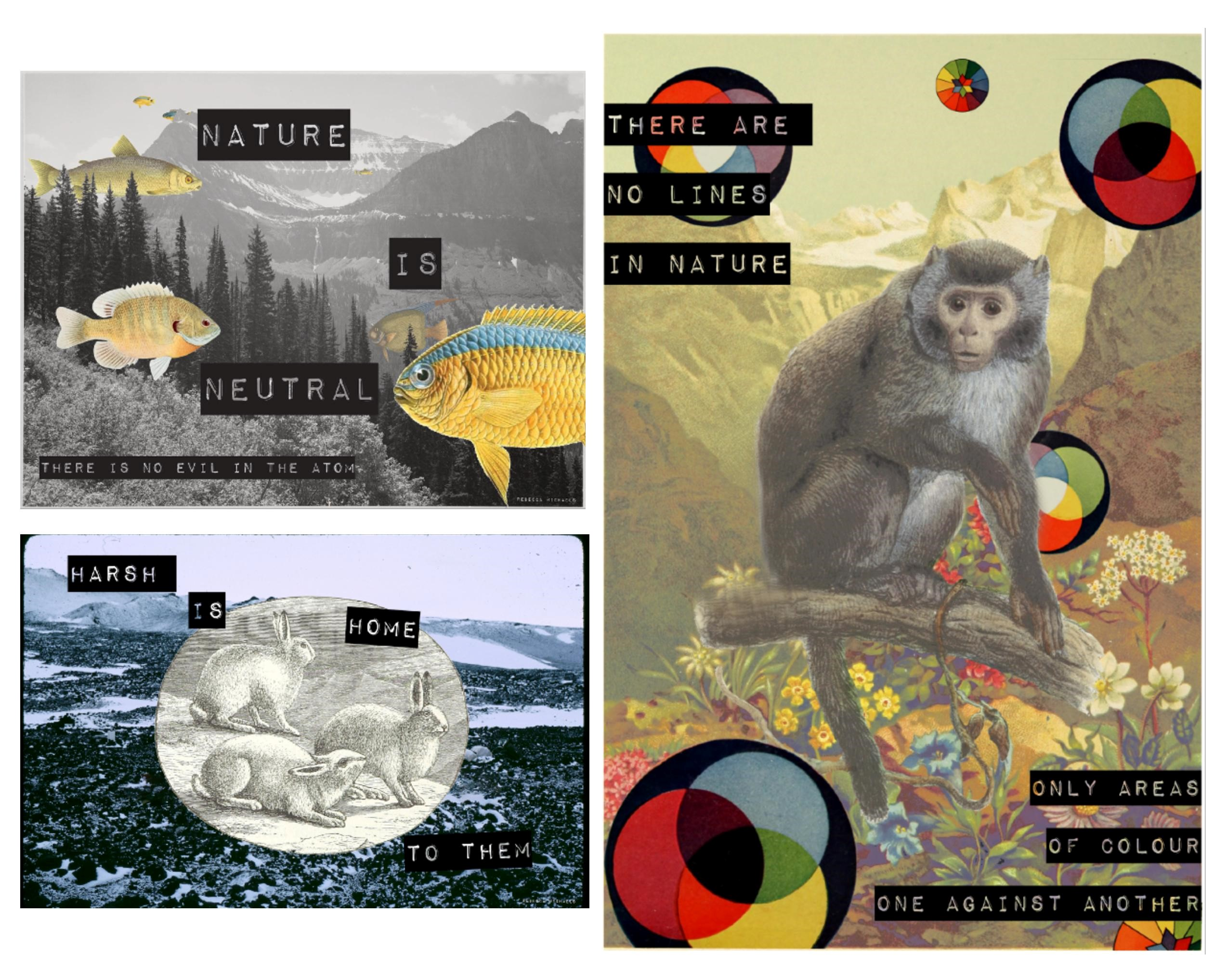 Collage Series